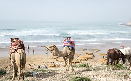 Destination surf Maroc